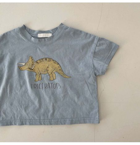 Triceratops Oversized T-shirt